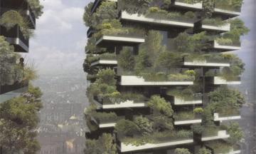 Có một khu rừng trên bancon nhà chung cư